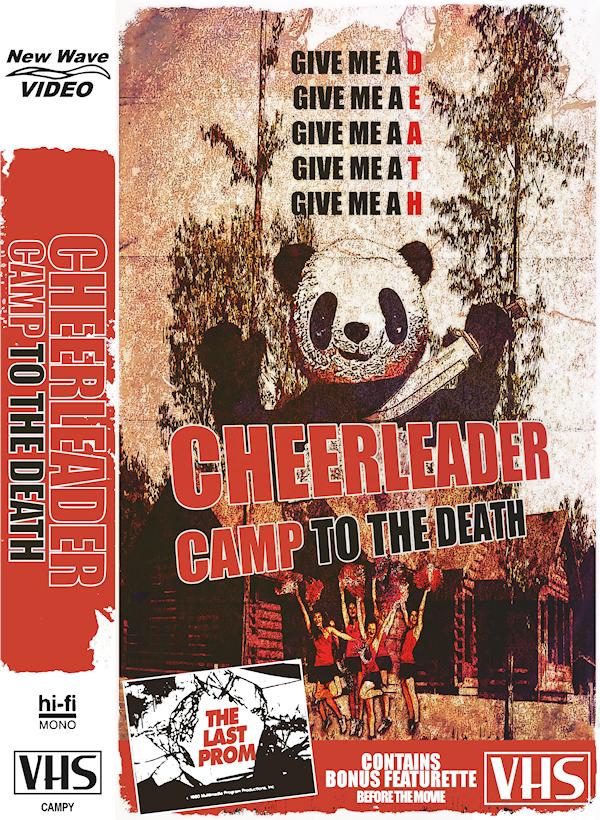 cheerleadercampvhsWEB